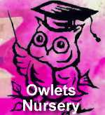 Owlets Nursery School